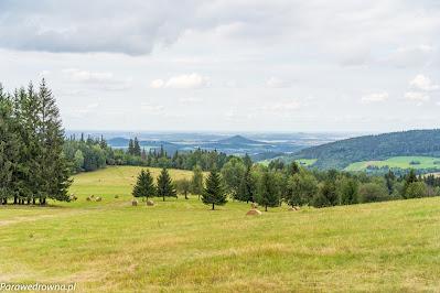 Ostrzyca Proboszczowicka, widok z wierzchołka Łysej Góry