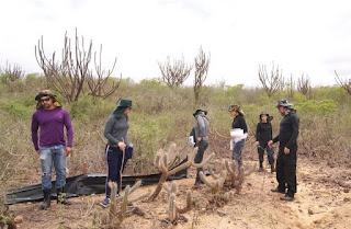 Pesquisa de professor do CES/UFCG faz levantamento da fauna e flora em Reserva Ecológica de Picuí
