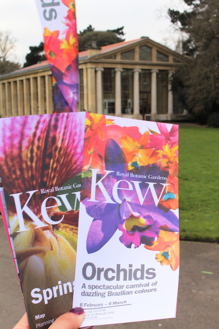 Kew Gardens Orchid Exhibition 2016 London