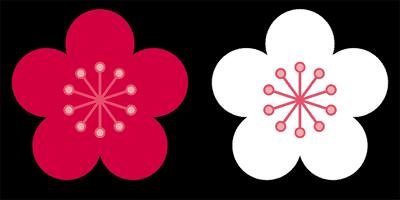 紅白の梅花