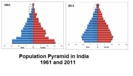Figure 4: Population Pyramids