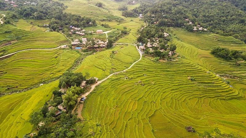 Que faire à la réserve naturelle de Pu Luong?
