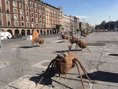 desfile de hormigas cdmx 2017