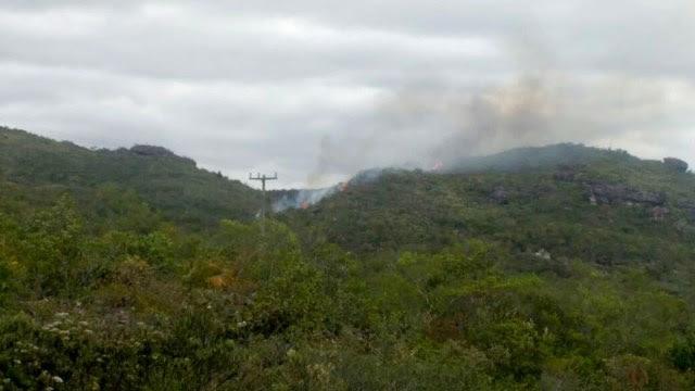 O fogo foi identificado nesta quinta e contido imediatamente pelos brigadistas voluntários (Foto: Divulgação/Cifa)