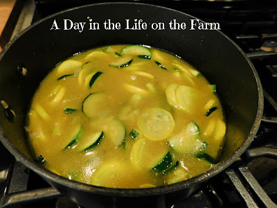 Zucchini and Summer Squash Soup