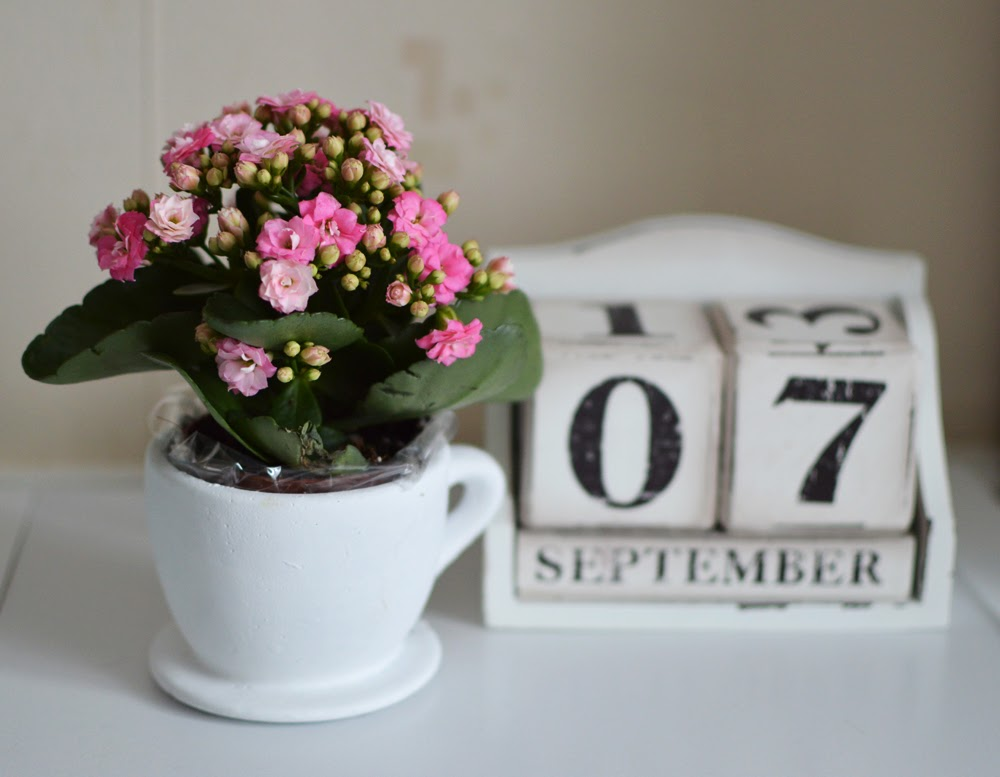 Wooden Calendar & Miniature Flowers