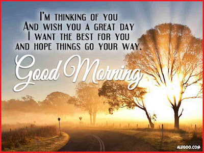 Good Morning Quotes For Friends: i'm thinking of you and wish you a great day