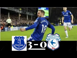 Cardiff City vs Everton 0-3 Football Highlights and Goals 2019