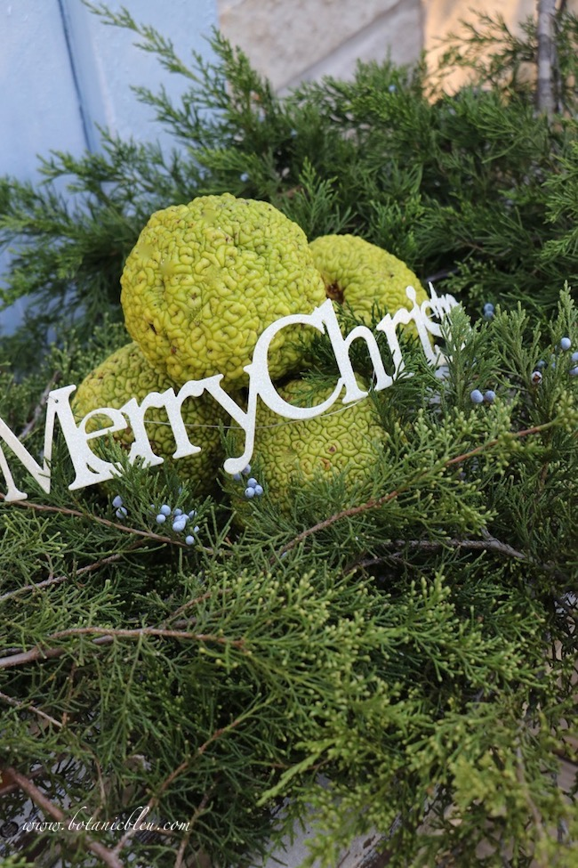 Fresh greenery displays at the pickup location for online shoppers give online shoppers ideas for outdoor decorations at this year's French Country Christmas Event