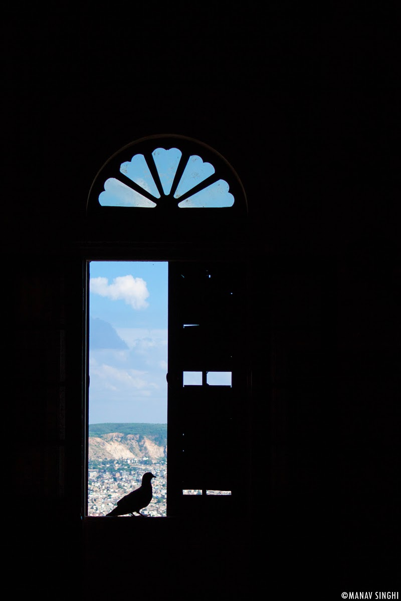 Window with Pigeon at First Floor at Madhavendra Palace, Nahargarh Fort, Jaipur.