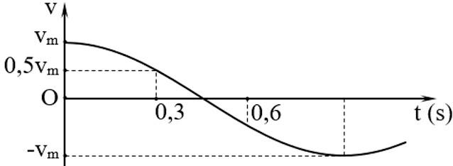 Hình ảnh minh họa câu 8 tracnghiem online Phương trình dao động của con lắc đơn