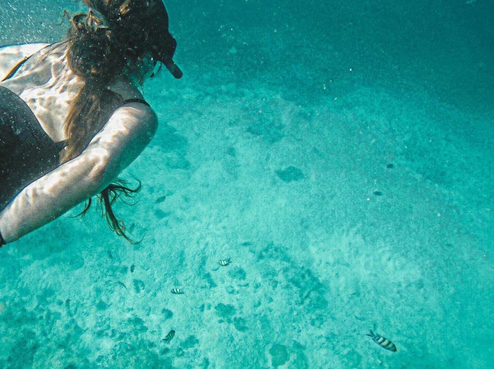 Snorkeling in Koh Phi Phi Thailand