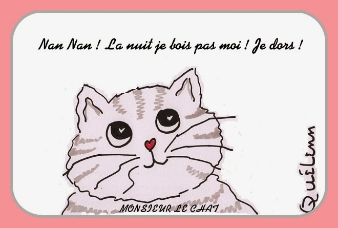 dessin de Monsieur LE CHAT,