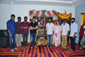 Chaitu Lavanya New Telugu movie Launch-thumbnail-1
