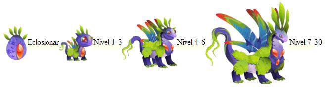 imagen del crecimiento del dragon aurora