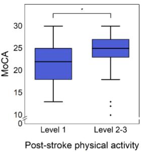 脳卒中後の身体活動レベルとMoCA