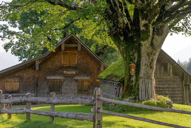Kulinarische Genusswanderung – Bürserberg | Wandern Brandnertal | Wanderung Vorarlberg 05