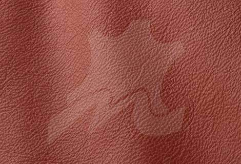 piele - naturala - Prescott - Begonia-240