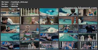 Pool Shark (2016)