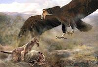 ricerca sugli uccelli della preistoria
