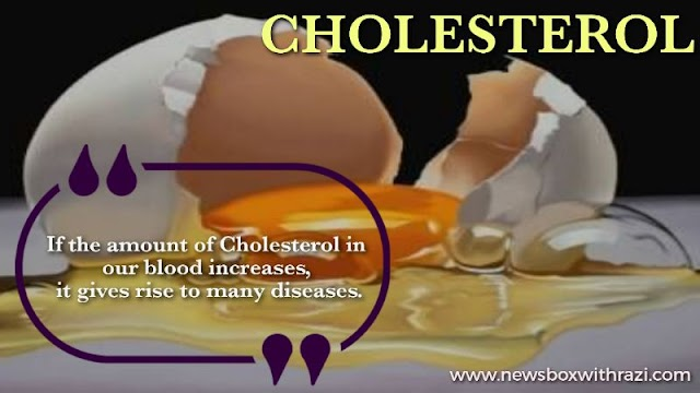 What is cholesterol and Why does it happen? It is Plan and Treatment.