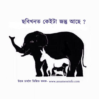 Assamese Puzzle For Whatsapp