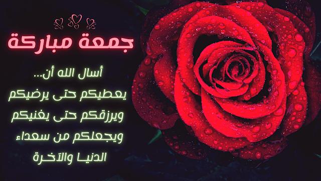 صورة وردة مكتوب عليها عبارة جمعة مباركة مع دعاء جميل
