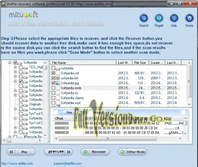 Aidfile Recovery Software Professional v3.6.9.1 - Full Version