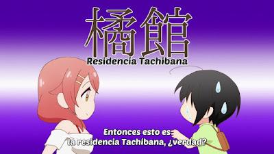 Ver Tachibanakan Triangle Tachibanakan Triangle - Capítulo 1