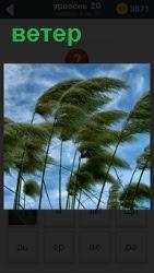 ответ на 20 уровень ветер