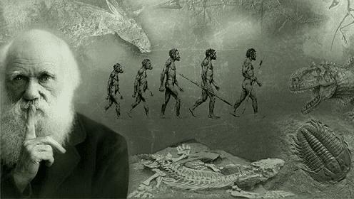 Bài Học Khởi Nghiệp Từ Thuyết Tiến Hóa Của Charles Darwin.