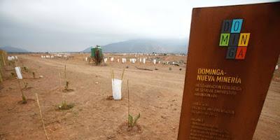 Primer Tribunal Ambiental acogió reclamación a favor de proyecto minero Dominga
