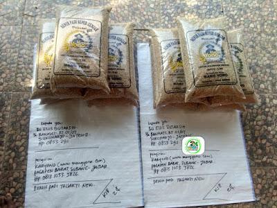 Benih padi yang dibeli EUIS SUTARSIH Sukoharjo, Jateng (Sebelum packing karung ).