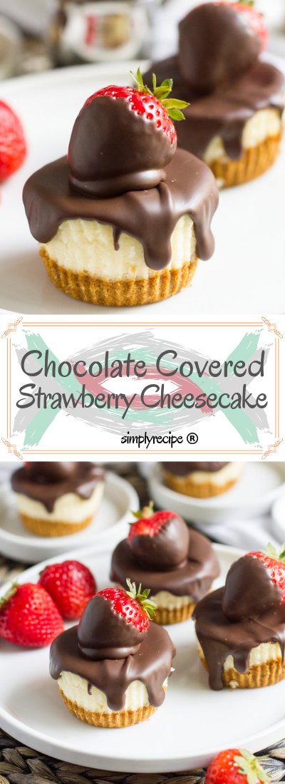 Chосоlаtе Cоvеrеd Strаwbеrrу Mini Cheesecakes