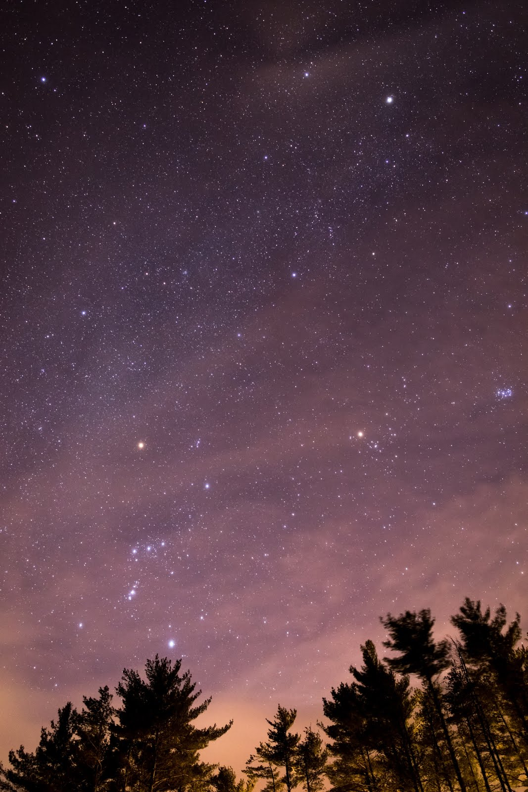 خلفية فضاء الاشجار - خلفيات فضاء ايفون