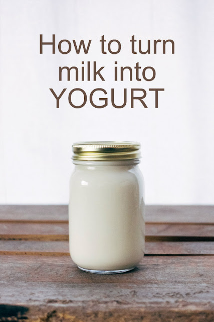 Making yogurt is easy, inexpensive and requires just a couple of ingredients.