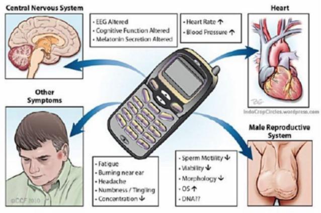 12 Tips Elakkan Radiasi Telefon Pintar
