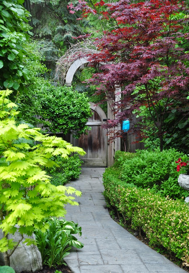 Three Dogs in a Garden: More Ideas for the Narrow Space ... on Narrow Backyard Landscaping Ideas id=39929