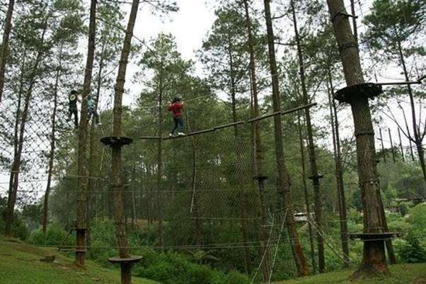 Wisata Bandung Treetop