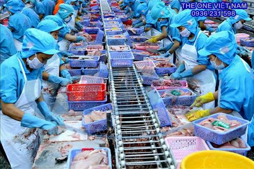 Trang phục bảo hộ khi chế biến thủy hải sản