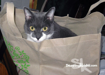 Supermarket Sweep #MusicMonday