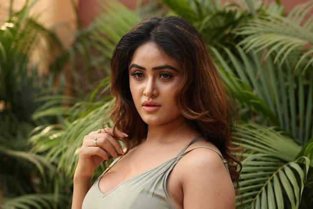 Sony Charishta Stills At Mela Movie On Location Press Meet
