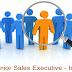 Junior Sales Executive - Ice Cream