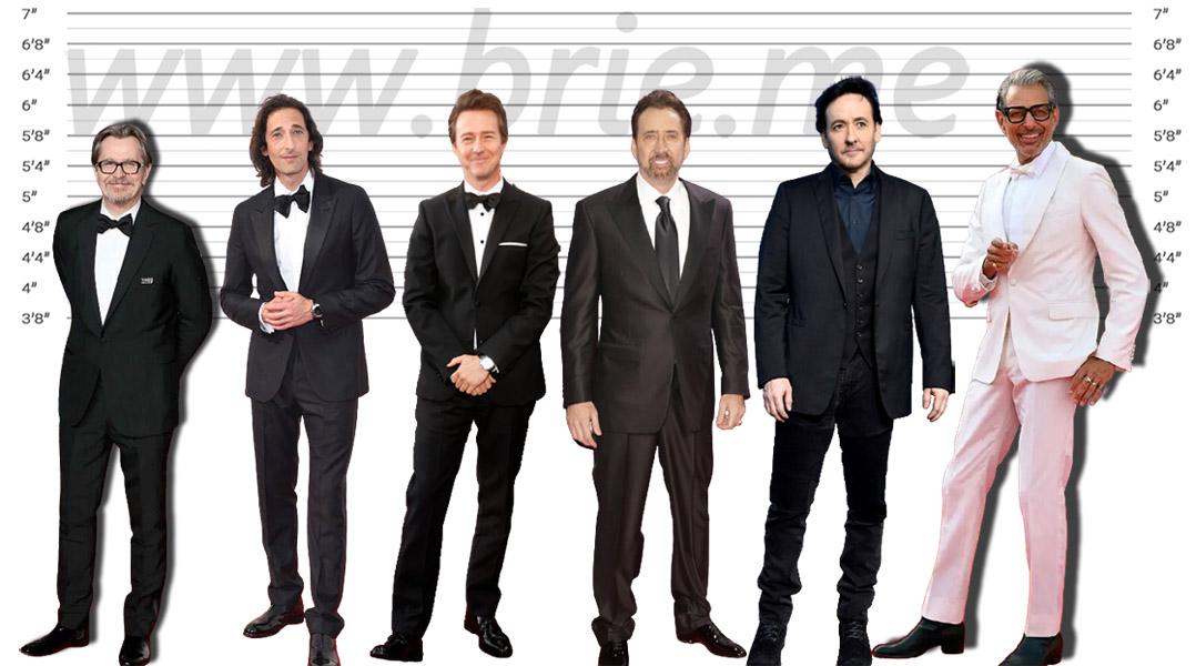 Gary Oldman, Adrien Brody, Edward Norton, Nicolas Cage, John Cusack, and Jeff Goldblum height comparison