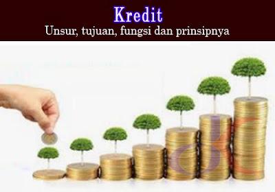 Kredit – Unsur, tujuan, fungsi dan prinsipnya