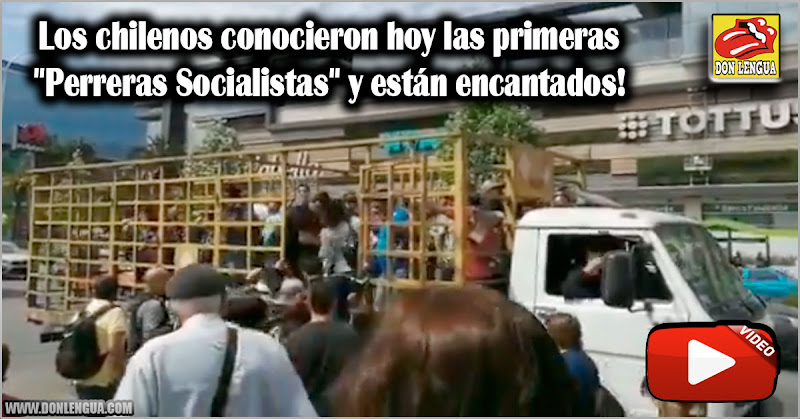 """Los chilenos conocieron hoy las primeras """"Perreras Socialistas"""" y están encantados!"""