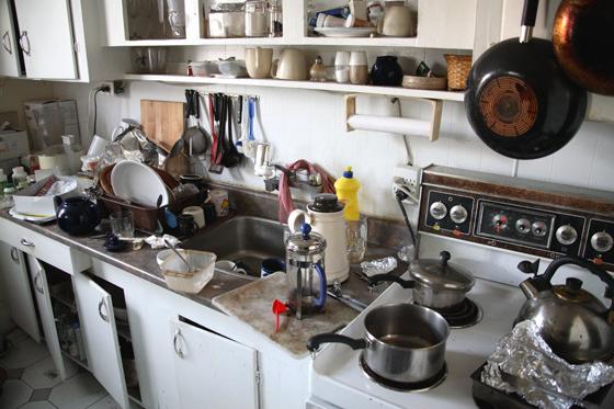 how to avoid flies in kitchen
