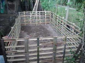 Begini Cara Membuat Kolam Terpal Untuk Ternak Lele Dengan Mudah - Cintanetworking.com