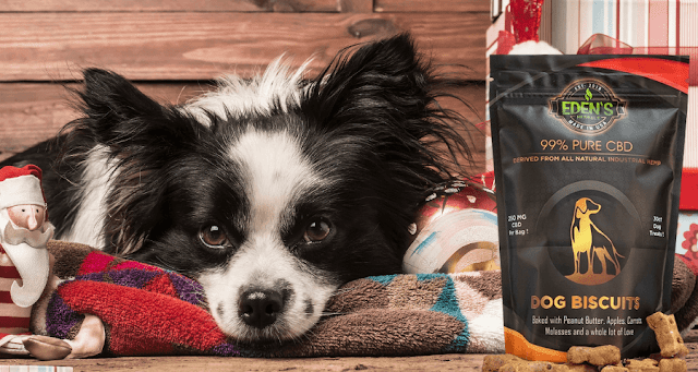 CBD treats for dogs By Barbies Beauty Bits