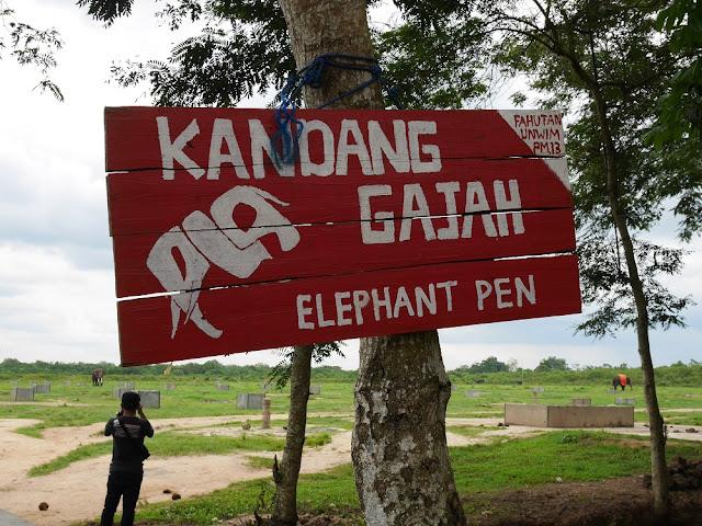 Kandang gajah di Way Kambas